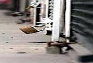 Van'da kepenk kapatma eylemi .19963