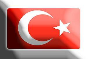 Türkiye'nin başkanlığı bugün başlıyor.7941