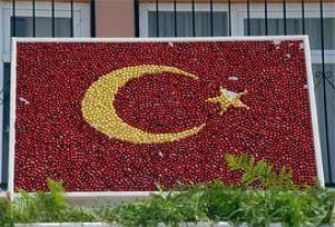 Aydın'da kirazdan Türk bayrağı.20354