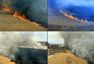Manisa'da buğday tarlaları kundaklandı.12115