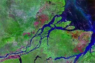 Amazon liderii Nikaragua'ya sığınacak.16237