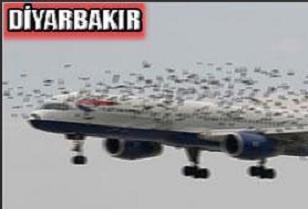 Diyarbakır uçağı faciadan döndü.10096