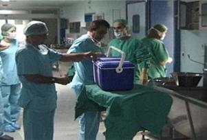 Organ nakli ilacında gençlik umudu.12494