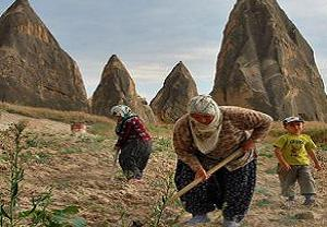 DP'li Çıray: Çiftçimiz yabancıların amelesi oldu.18612