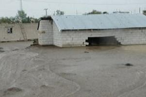 Bitlis Adilcevaz'da sel baskını.8253