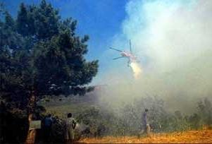 Antalya'da orman yangını çıktı.10022