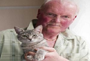 İşte gerçek Kötü Kedi Şerafettin.8901