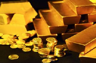Giresun'da 90 ton altın heyecanı.16022