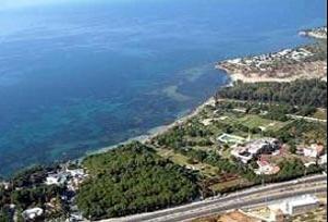 Bursa'n�n sahilleri temiz ��kt�.14513