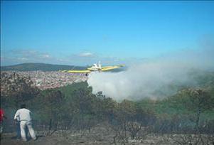 Muğla Yatağan'da orman yangını.8945