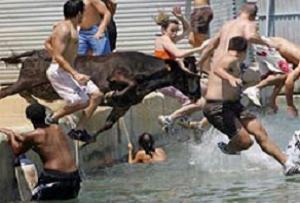 Boğa herkesi denize döktü.15151