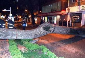 Gaziantep'te rüzgar, okul çatısı uçurdu