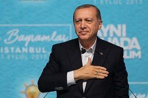 Erdoğan: Arakan yalnız kalmayacak.14830