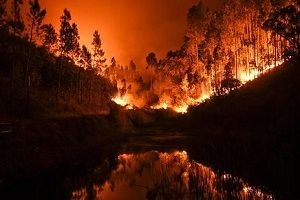 Bir yangın dehşeti daha: 57 ölü.18902
