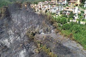 Mudanya'daki yangında ilk şüphe!.35470