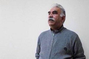 Öcalan'ın evinde saklanan HDP'li gözaltında.11150