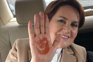 İşte Akşener'in partisinin logosu!.14651