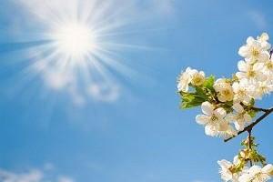 Meteoroloji: Sıcak hava geliyor.13602