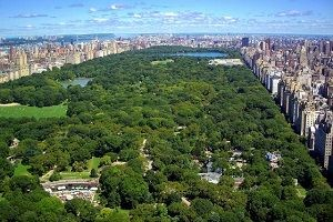 Central Park'tan 4 kat büyük olacak!.32955