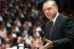 Erdoğan: Bu bir meydan okumadır!.18791