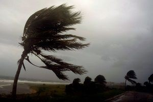 Irma kasırgası Florida'da!.13279