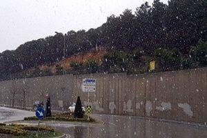 İstanbul'a kar yağdı!.21428
