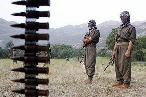 Hakkari Şemdinli'de bir terörist daha etkisiz.23071