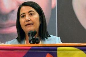 HDP yeni eşbaşkanını seçti: Serpil Kemalbay.13710