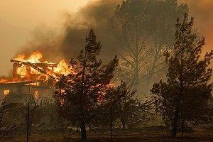 Kaliforniya'da yangın: 17 kişi can verdi!.22295