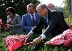 Cumhurba�kan� Erdo�an �ay hasad�nda